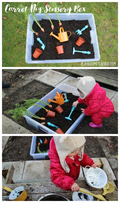 Carrot Dig Sensory Box .jpg