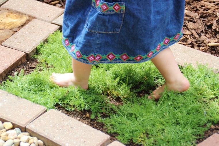 Barefoot-2