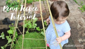 Bean-Teepee-Tutorial