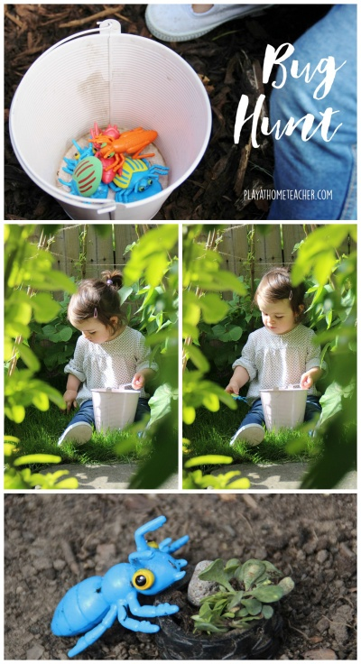 Bug-Hunt-Garden-Activity.jpg