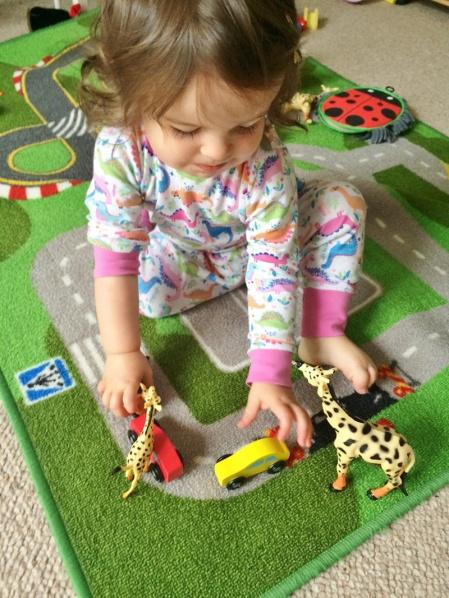 1.-Cars-in-the-giraffe-area