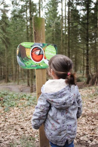 Gruffalo-Spotter-app-Wyre-Forest-13